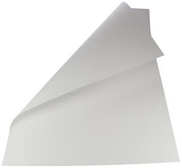 Folia carton photo, blanc
